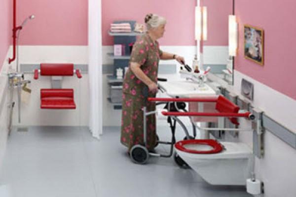 Amazing bathroom model home interior design ideas - Toilet for handicapped person ...
