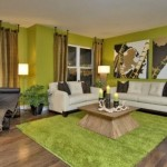 Amazing Green Living Room Design Decor Paint Ideas