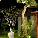 latest Home Interior Outdoor
