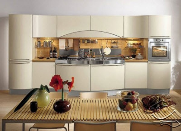 Luxury Kitchen Design Model
