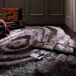 Awesome Carpet Design