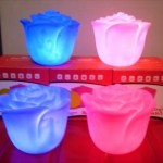 Interesting Pink and Blue Rose Lamp Design Model
