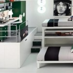 Top Loft and Bunk for Kids and Teenager Bedroom Theme