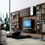 Amazing Living Room Furniture Ideas