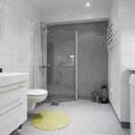 Modern Toilet Design in Studio Apartment