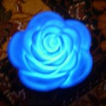 New Blue Rose Lamp Design Model