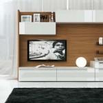 Contemporary Home Theater Design Interior