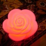 Best Pink Rose Lamp Design Concept