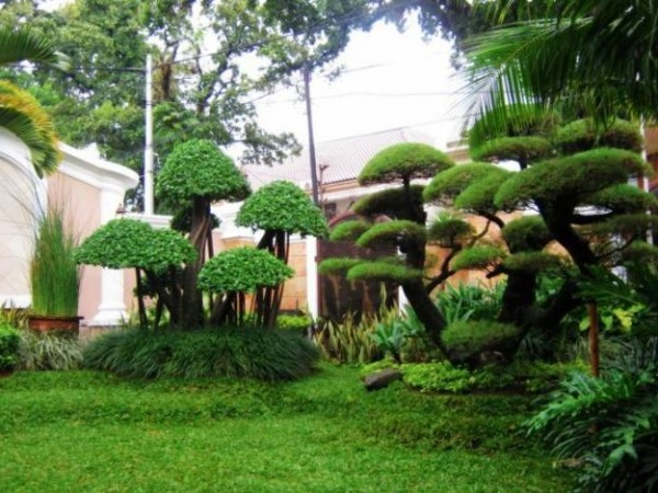 Minimalist and Artistic Garden Design Ideas Green Home Gardening ...