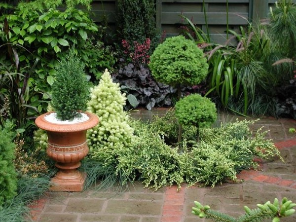 Attractive Home Gardening Design Theme