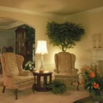 Great Living Room Interior Design Collection