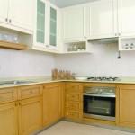 Minimalist Botanical Residence Kitchen Design Archive