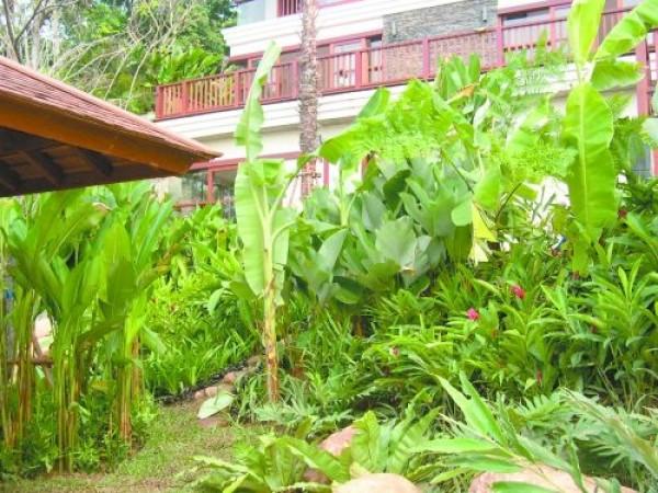 New Villa Garden Design Model